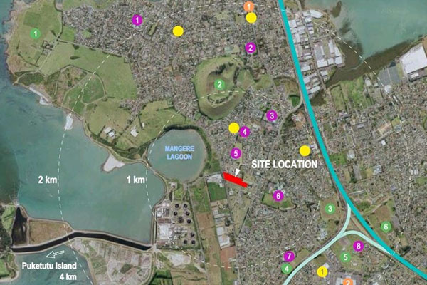Aerial view of Auckland subdivision
